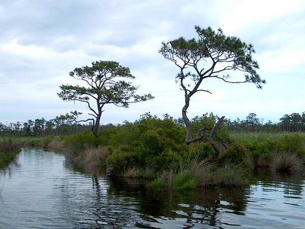 Mackay Island National Wildlife Refuge