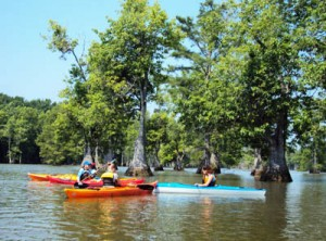 se coast paddling trail youth paddle